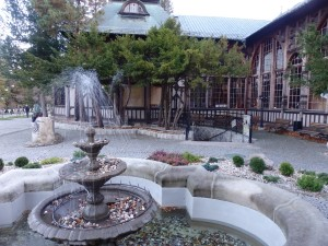 Hotel w gorach (1)